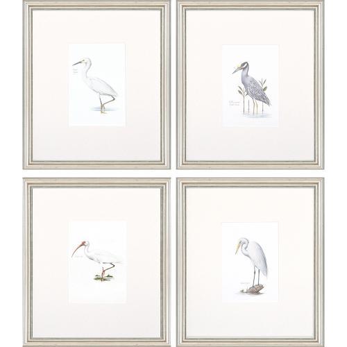 Egrets S/4