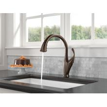 Venetian Bronze Single Handle Pull-Down Kitchen Faucet with ShieldSpray ® Technology