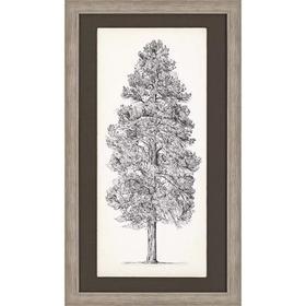 Tree Sketch II