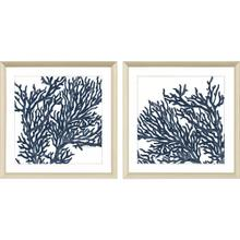 Product Image - Blue Coral II S/2