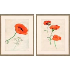 A Pair Of Poppies S/2