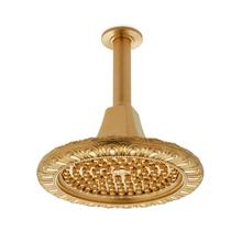 Polished Brass Egg & Dart Rain Dome with Nozzles