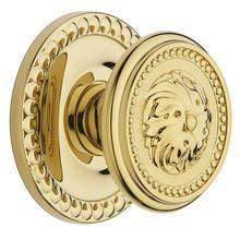 See Details - Lifetime Polished Brass 5050 Estate Knob