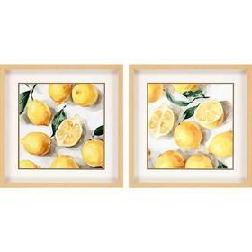 Fresh Lemons S/2