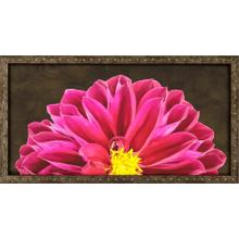 Product Image - Flower 4