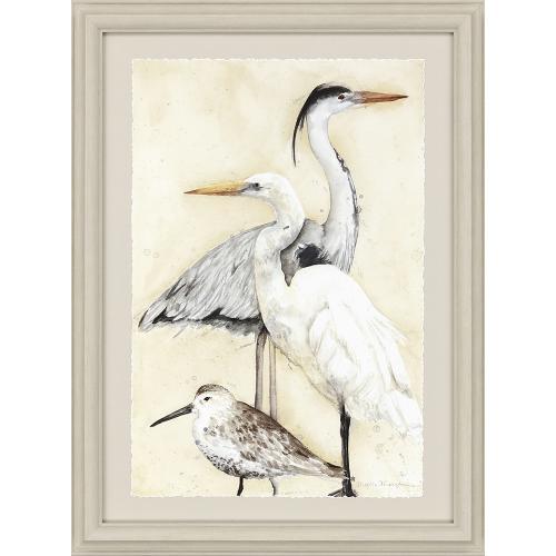 Coastal Birds S/2