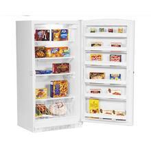 20.1 cu.ft. Manual Defrost Upright Freezer