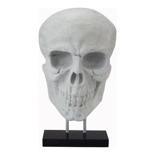 See Details - Braincase Skull Statue White