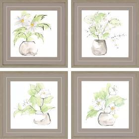 Plants I S/4