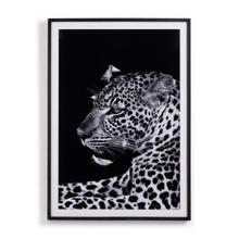 Leopard By Teague Collection