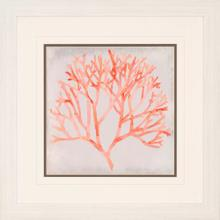 View Product - Watercolor Coral IV