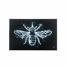 ACME Vedris Wall Art (LED) - 97717 - Glam - LED, Glass, MDF, Faux Crystal (Acrylic) - Smoky Glass and Faux Crystal