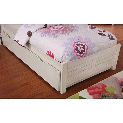 Bed Brogan