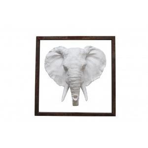 Elephant Head in Frame