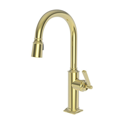 Newport Brass - Forever Brass - PVD Pull-down Kitchen Faucet
