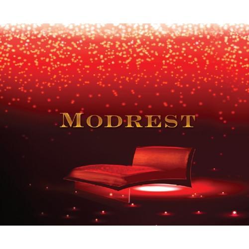 VIG Furniture - Modrest - Case Goods 2013 Catalog