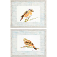 Birds S/2