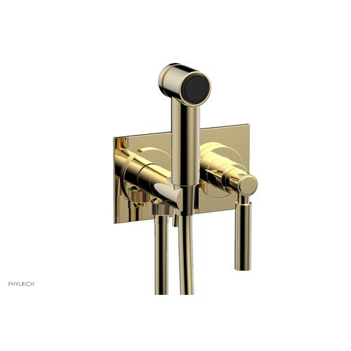 BASIC Wall Mounted Bidet, Lever Handle 130-65 - Polished Brass Uncoated