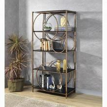 ACME Hudice Bookshelf - 92659 - Industrial, Contemporary - Metal Tube, Veneer (PVC), PB - Black Oak and Champagne