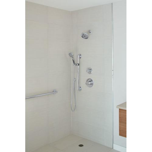 Champagne Bronze ActivTouch Hand Shower 2.5 GPM 9-Setting