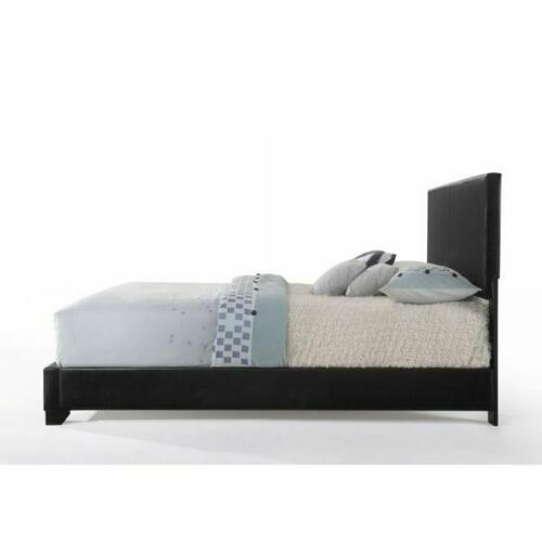 ACME Ireland III Queen Bed (Panel) - 14340Q - Black PU