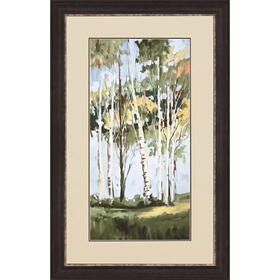 Bright Birch Trees