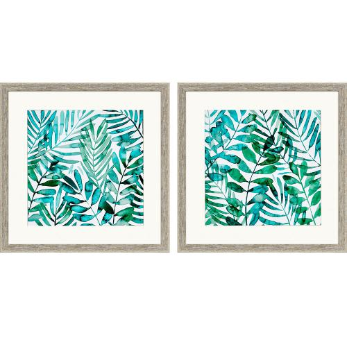 Product Image - Frond Waltz S/2