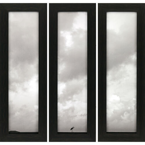 Heron Haze S/3