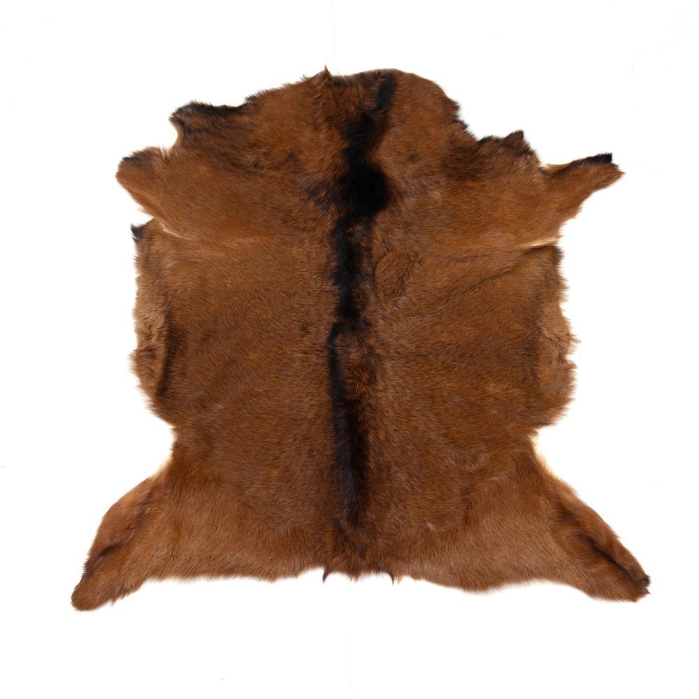 See Details - Brown Cover Angora Short Hair Throw