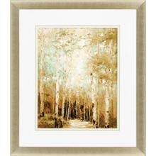 Product Image - Aspens In The Light