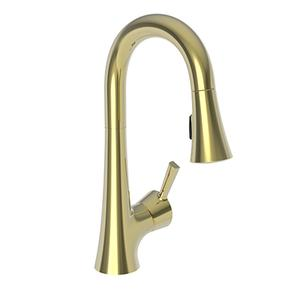 Uncoated Polished Brass - Living Prep/Bar Pull Down Faucet
