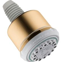 Brushed Bronze Showerhead 3-Jet, 2.5 GPM