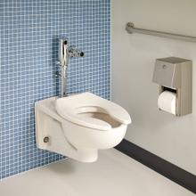 View Product - Afwall Millenium FloWise Elongated Toilet - White
