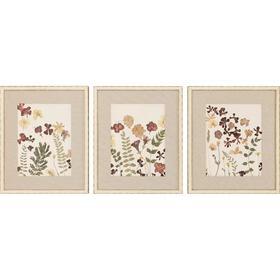 Pressed Flowers I S/3