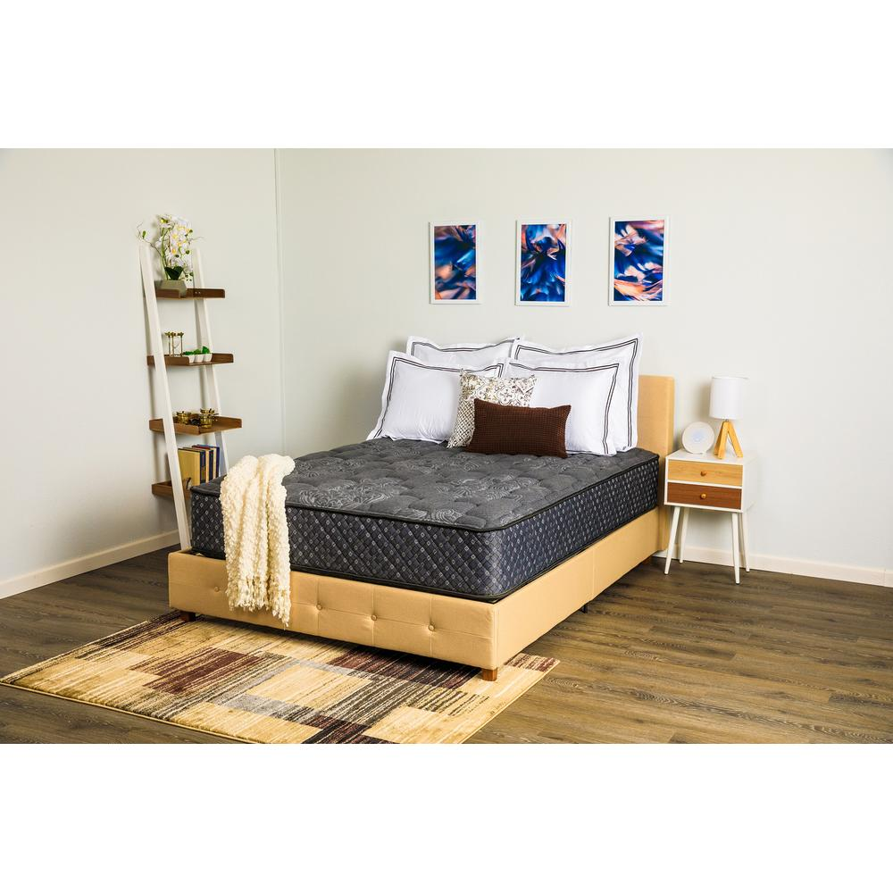 """Renue Performance 13.25"""" Enliven Firm Double Sided Mattress, Queen"""
