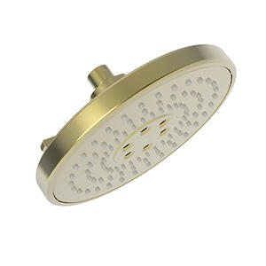 Uncoated Polished Brass - Living Luxnetic Multifunction Showerhead
