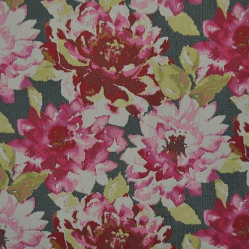 Marshfield - Magnolia Orchid