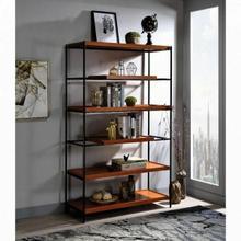 ACME Oaken Bookshelf - 92677 - Industrial, Contemporary - Metal Tube, Paper Veneer (PU), MDF - Honey Oak and Black