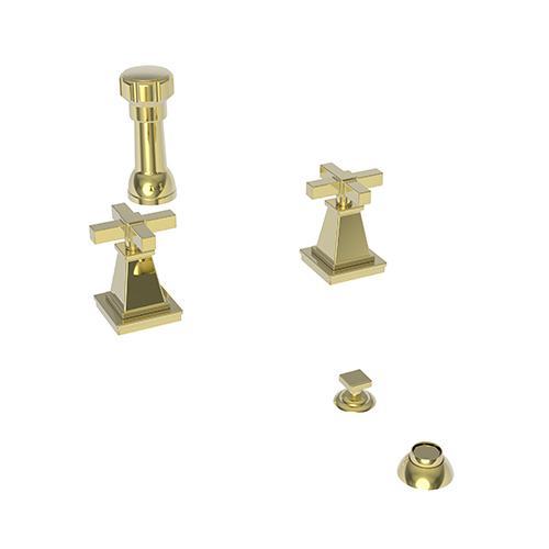 Newport Brass - Forever Brass - PVD Bidet Set