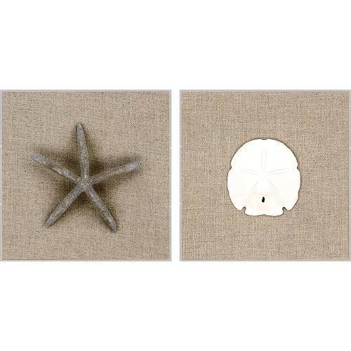 Star/Dollar S/2