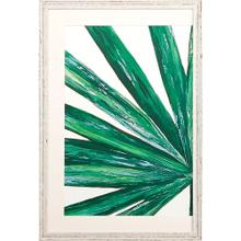 Frond I