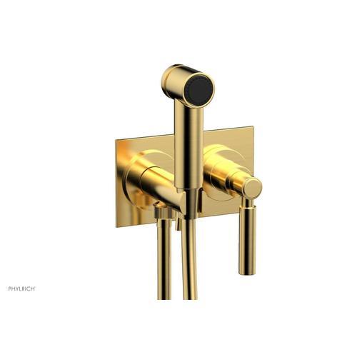 BASIC Wall Mounted Bidet, Lever Handle 130-65 - Satin Gold