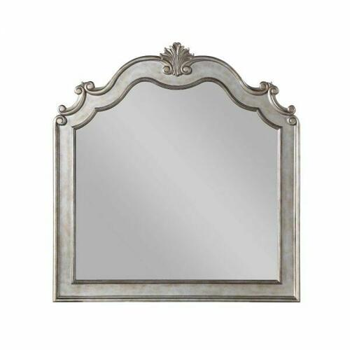 ACME Esteban Mirror - 22204 - Glam - Wood (Poplar), Poly-Resin, MDF, PB - Antique Champagne
