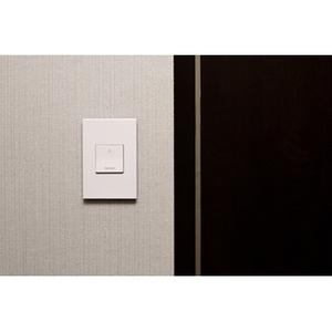 Engraved Paddle Switch, 15A, White - Nightlight