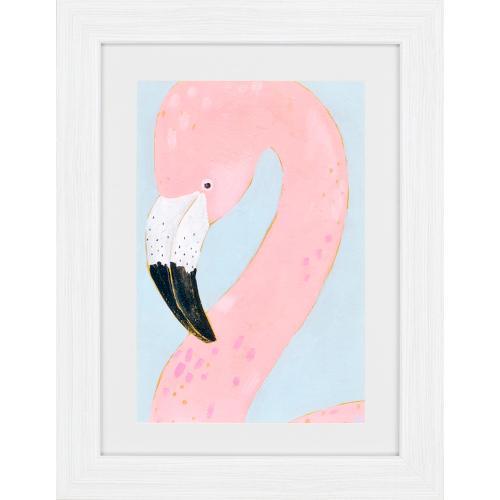 Tropical Birds S/4