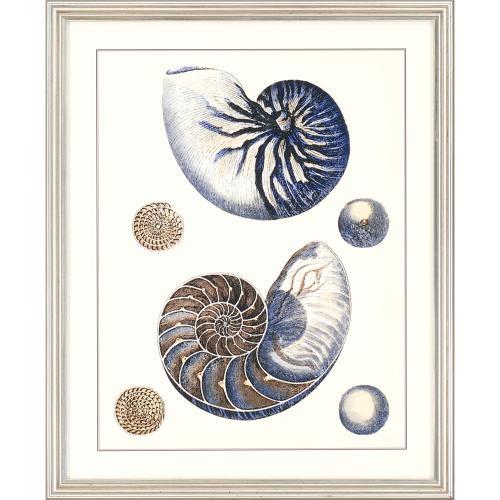 Sea Life S/4