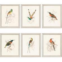 Product Image - Hummingbirds S/6