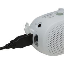 See Details - Portable AM/FM Travel / Emergency Radio: RF-TJ10