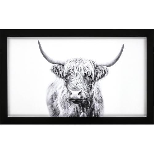 Horned Bull