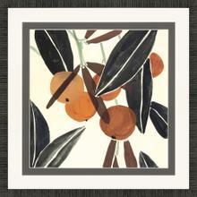 Kumquat II